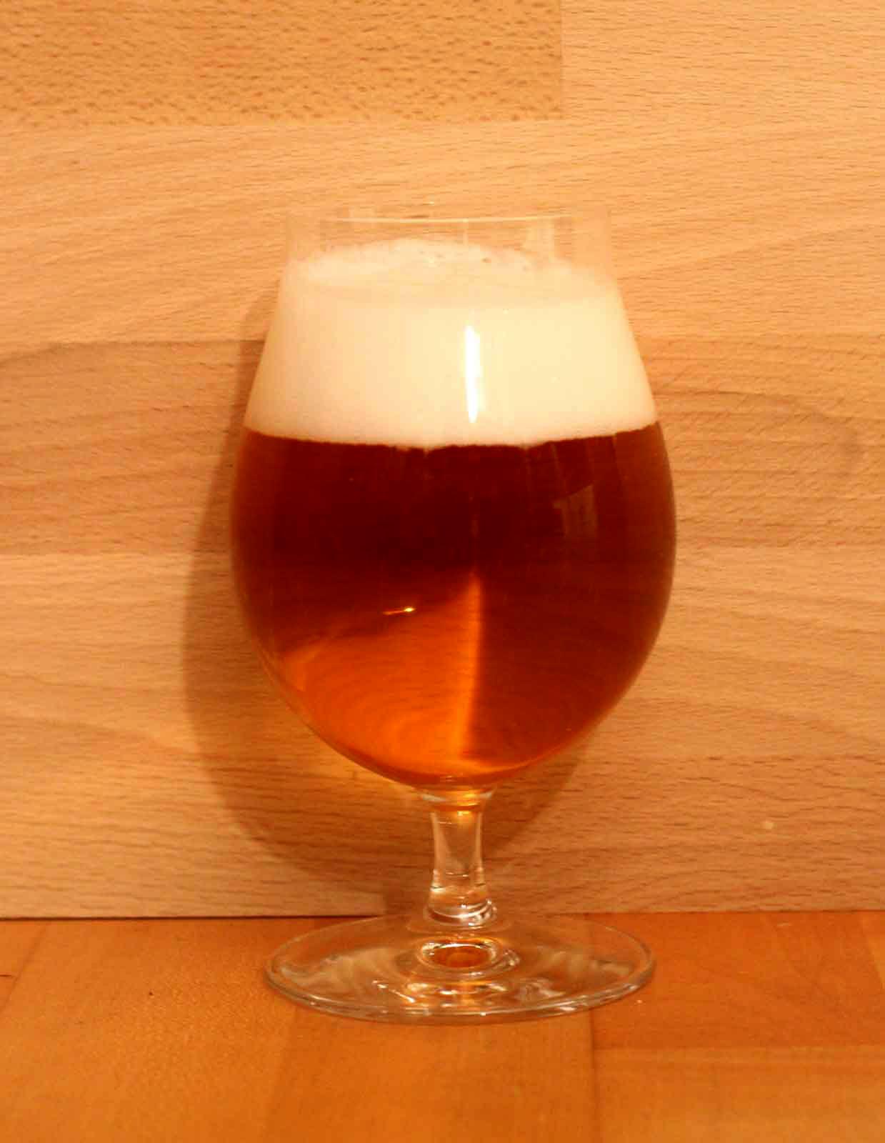 Glastyp Tulpe